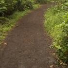 psychotherapist woodland hills yoga